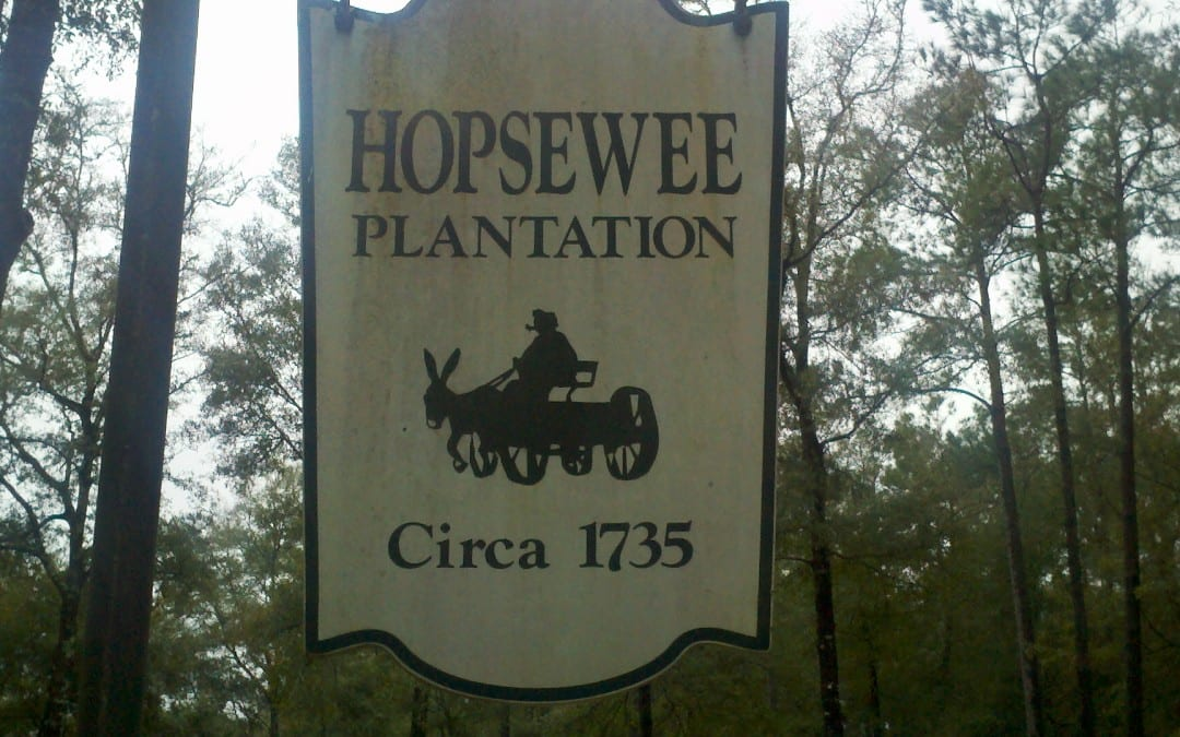Teachable Moments at Hopsewee Plantation