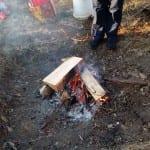 Camp fire at Hampton Plantation