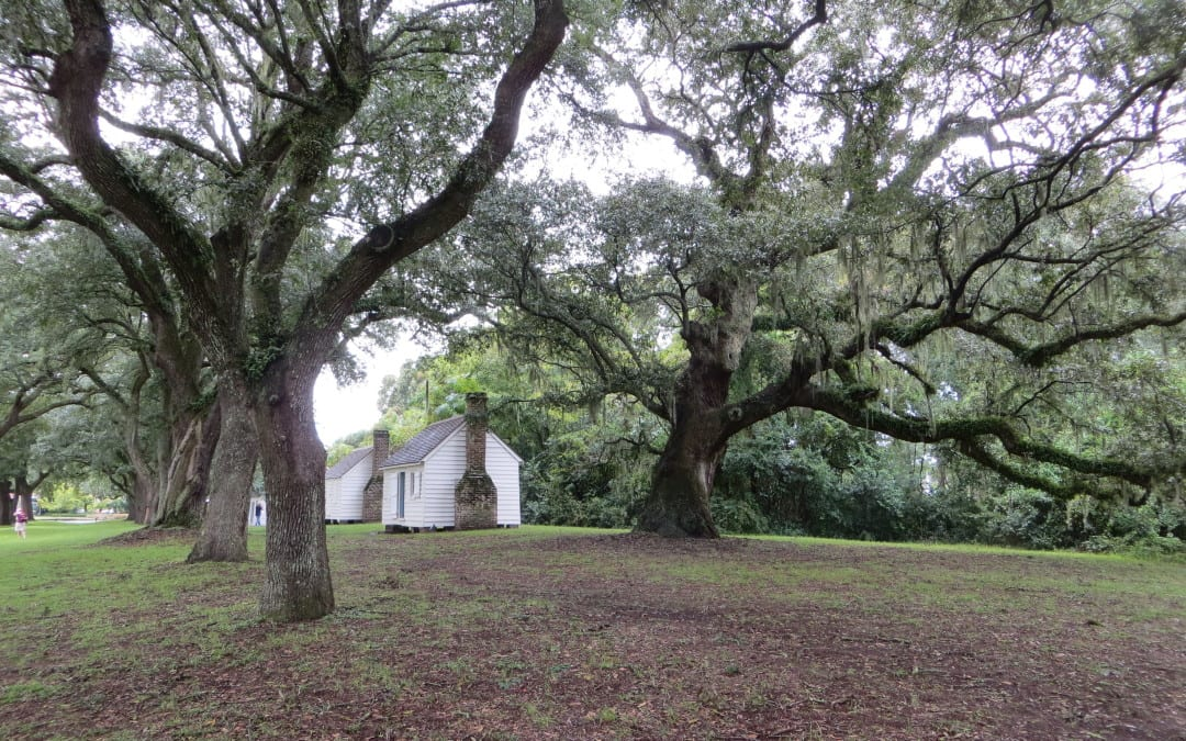 A History Denied – Preserving Tangible Evidences of Slave Dwellings: The Second Annual Slave Dwelling Project Conference